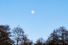 Moon In A Clear Blue Sky Above...