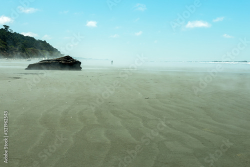 A lone beachcomber on Kalaloch Beach in Olympic National Park, Washington, USA Canvas Print