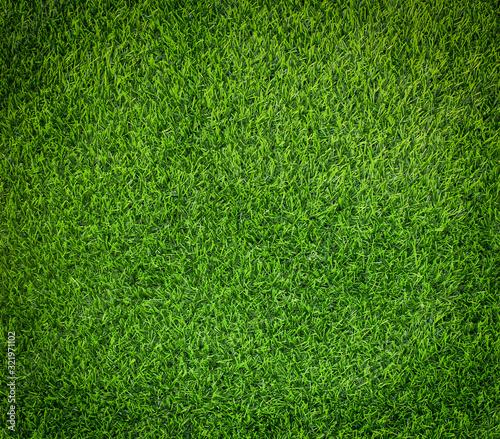 Fototapeta Green grass soccer field background. obraz na płótnie