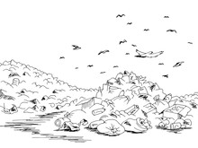 Landfill Trash Ecology Problem...