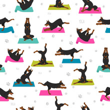 Yoga Dogs Poses And Exercises ...