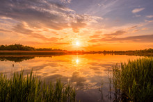 Scenic View Of Beautiful Sunrise Or Dawn Above The Pond Or Lake At Spring Or Early Summer Morning With Cloudy Sky Background, Fog Over Water And Reed Grass With Dew At Foreground. Landscape. Water Ref