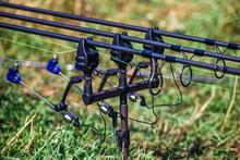 Fishing Adventures, Carp Fishing. Carp Fishing Rods Set Up On Holder With Bite Alarms And Illuminated Indicators . Professional Fishing Equipment