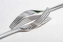 Two Metal Shiny Forks On A Lig...