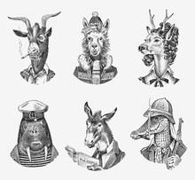 Animal Characters Set. Llama Skier Deer Lady Walrus Crocodile Smoking Goat Dog Donkey Alpaca. Hand Drawn Portrait. Engraved Monochrome Sketch For Card, Label Or Tattoo. Hipster Anthropomorphism.