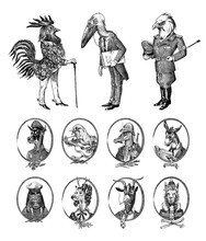 Animal Characters Set. Bald Eagle Rooster Stork Walrus Crocodile Goat Dog Donkey Alpaca Llama Deer. Hand Drawn Portrait. Engraved Monochrome Sketch For Card, Label Or Tattoo. Hipster Anthropomorphism.