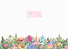 Spring Or Summer Flowers Border,isolated On White Background. Watercolor Floral Meadow Illustration. Green Leaves, Grass, Sprigs. Hand Drawn Botanical Print