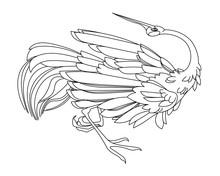 Dancing  Bird Stork Or Crane, ...