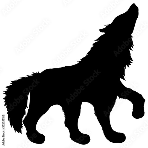 black silhouette of wild animal howling wolf standing with raised paw and fluffy shaggy tail Wall mural