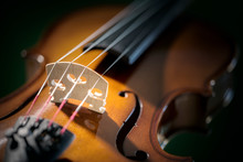 Violin Close Up On Bridge And Strings Background