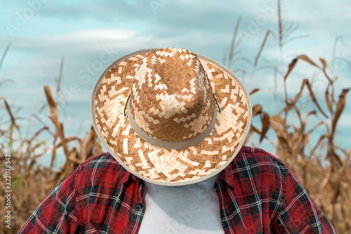 Disappointed corn farmer with his head down in cornfield