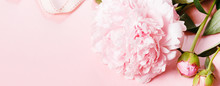 Romantic Banner, Delicate Whit...