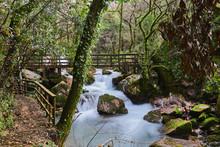 Puente De Madera Sobre Un Río...