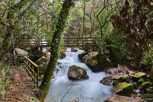 Puente de madera sobre un río con cascada en un bosque Wallpaper Mural