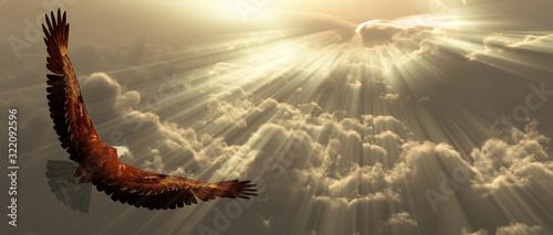 Eagle in clouds Wallpaper Mural