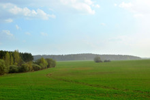 View Of A Field With Green Gra...