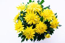 Bouquet Of Yellow Chrysanthemu...