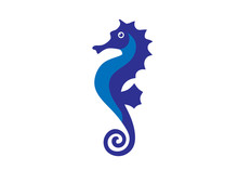 Sea Horse Creative Vector Illu...