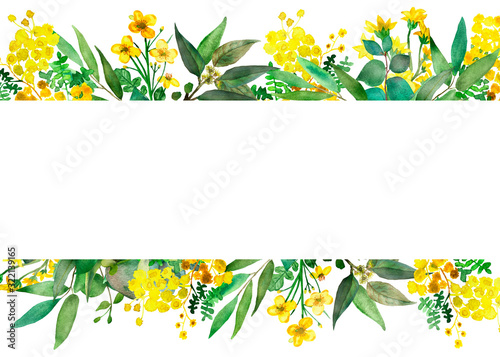 Watercolor hand painted nature meadow floral banner frame with yellow acacia and Canvas Print
