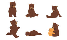 Set Of Brown Bears In Everyday...