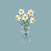 Daffodils In A Glass Jar. Whit...