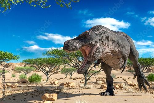 Fotografie, Obraz tyrannosaurus found somothing on desert