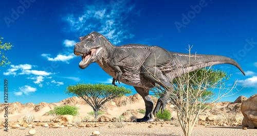 Fotografie, Obraz tyrannosaurus is walking alone on desert panoramic view
