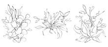 Botanical Sketched Floral Bouq...