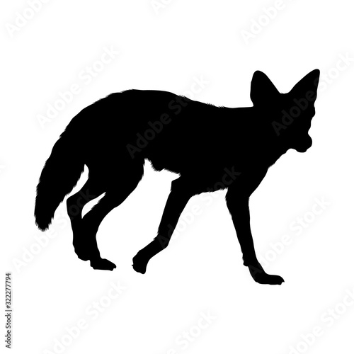Fotomural Coyote (Canis latrans) Silhouette Vector Found In Map Of North America