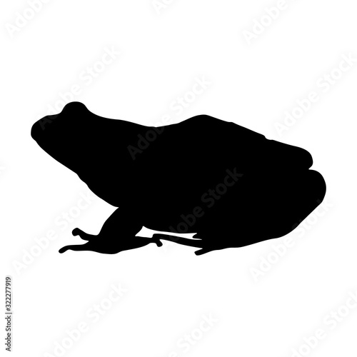 Common Frog (Rana Temporaria) Silhouette Vector Found In Map Of Europe Canvas Print