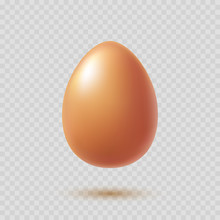Chicken Brown Egg With Shadow ...