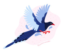 Taiwan Azure Magpie. Animals Of Taiwan. Urocissa Caerulea. Cute Blue Bird A Flying In The Sky. Exotic Bird Of Asia. Hand Drawn Vector Illustration In Scandinavian Style.