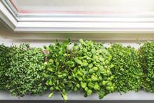 Kitchen Garden - Fresh Raw Mic...