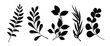 Set of leaves silhouette of beautiful plants, leaves, plant design. Vector illustration .