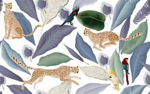 Jaguars And Cockatoo Parrots I...