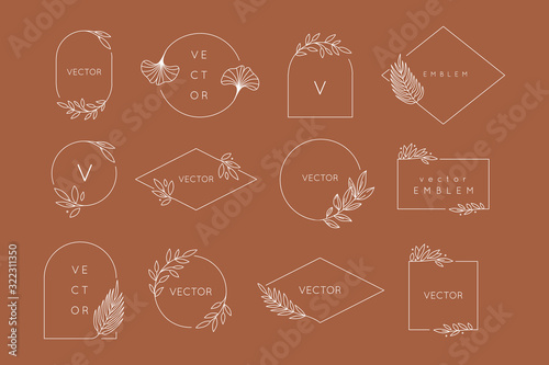 Wallpaper Mural Vector design templates in simple modern style with copy space for text, flowers