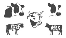 Vector Set Of Illustrations Of...