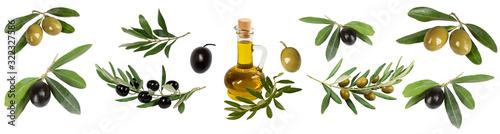 Collage of olives, olive branches, olive oil bottles Canvas Print
