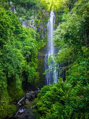 Fototapeta Wodospad Maui, Hawaii Hana Highway - Wailua Falls, near Lihue, Kauai. Road to Hana connects Kahului to the town of Hana Over 59 bridges, 620 curves, tropical rainforest