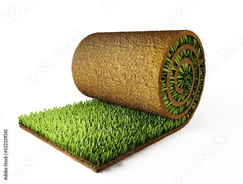 Cuadros en Lienzo roll grass