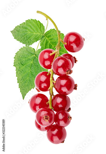 Photo Red currant isolated on white background