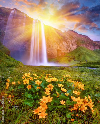Fototapeta krajobraz   incredible-sunset-on-seljalandsfoss-one-of-the-most-beautiful-waterfalls-on-the-iceland-europe-popular-and-famous-tourist-attraction-summer-holiday-destination-in-on-south-iceland-travel-postcard