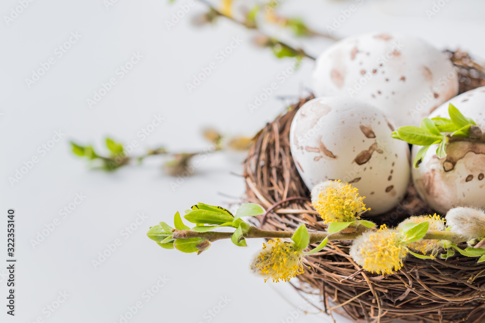 Fototapeta Composition with green buds on branches, decorative nest with easter eggs on a light background