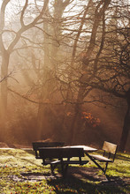Table And Bench In Sunset