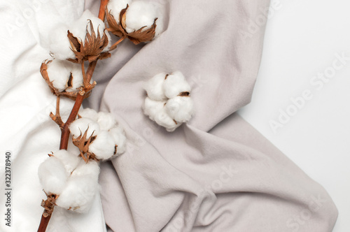 Flat lay Beautiful cotton branch, white and gray fabric on gray background top view copy space. Natural cotton fabric texture. Delicate white cotton flowers. Light cotton background. Eco textiles © olgaarkhipenko