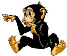 Cartoon Chimp Great Ape Or Chi...