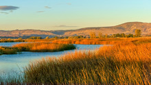 Tule Lake National Wildlife Refuge, California