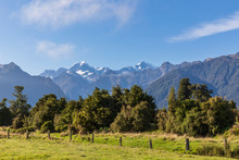 New Zealand, Westland District, Fox Glacier, Fence Stretching In Front Of Green Trees With Mountains In Background