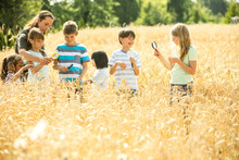 Children Examining Wheat Field With Their Techer, Using Magnifying Glasses