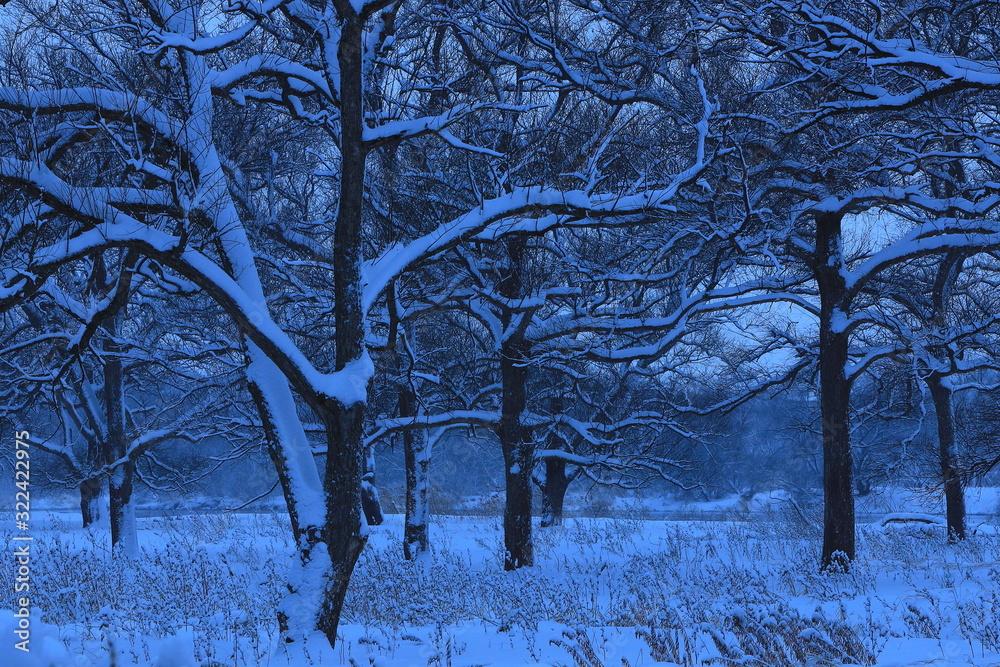 冬の北上展勝地